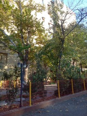 Трёхкомнатная квартира в Юнусабадском районе.своя.